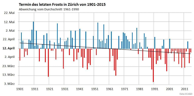 Im langjährigen Durchschnitt tritt der letzte Nachtfrost der Saison in Zürich am 12. April auf. In den letzten 17 Jahren brachten jedoch nur die Jahre 2001 und 2013 den letzten Frost zu einem späteren Zeitpunkt.